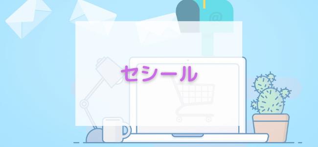 【毎日更新】セシールはどのポイントサイト経由が一番お得か!