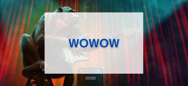 【毎日更新】WOWOWはどのポイントサイト経由が一番お得か!
