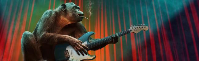 音楽・映画・アニメサイトの利用はどのポイントサイト経由が一番お得か!