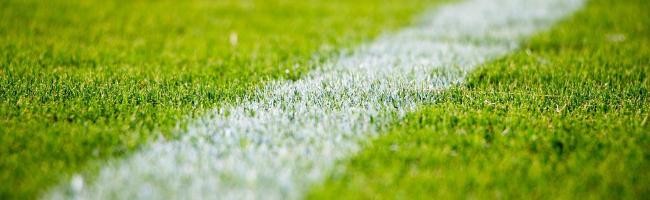 スポーツ・カー用品関連サイトの利用はどのポイントサイト経由が一番お得か!